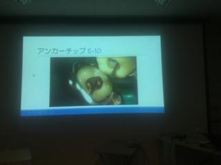 日本口腔インプラント学会 認定「講習会」-2