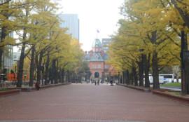 札幌講習会-あしたばデンタルクリニック公式サイトのブログ